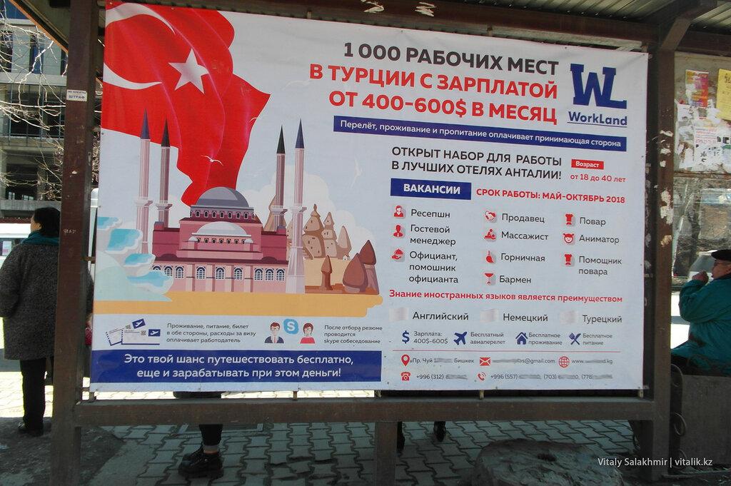 Работа в Турции, объявление