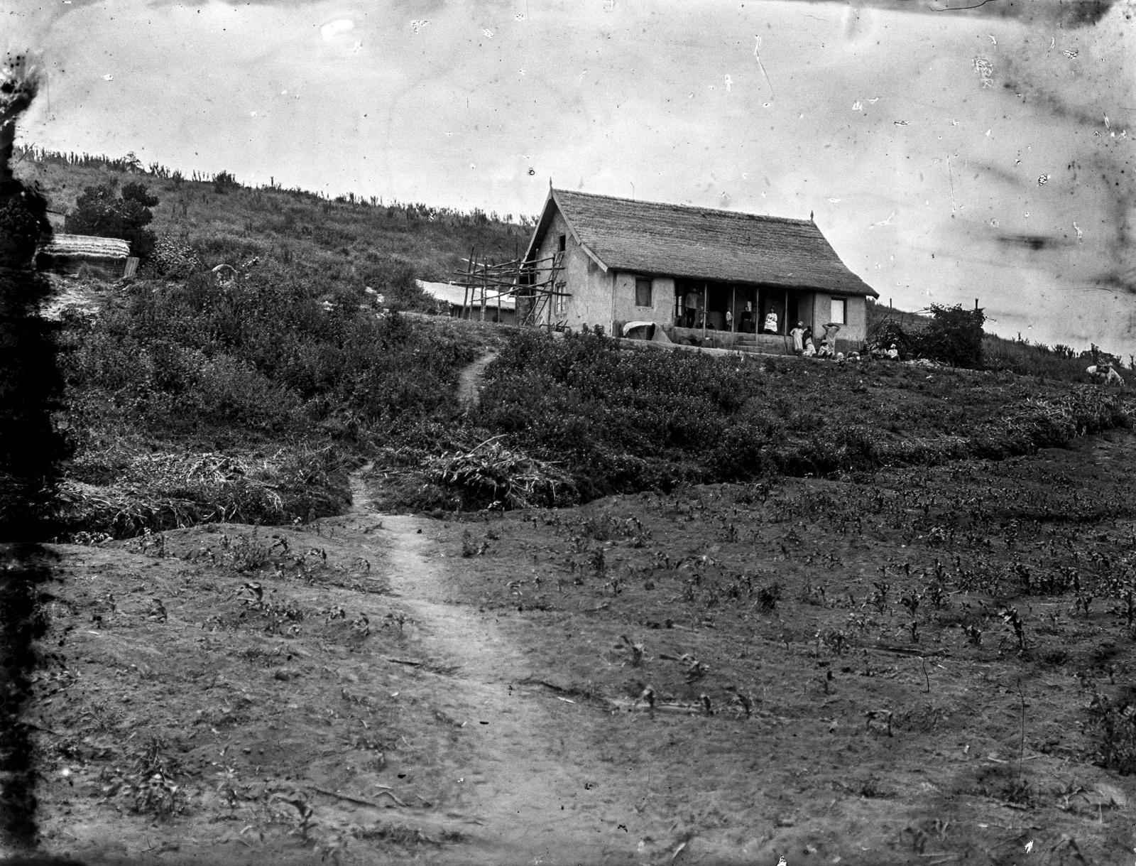 229. Деревянный дом на склоне