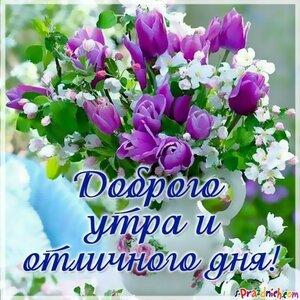 https://img-fotki.yandex.ru/get/1003894/131884990.fe/0_1669cc_1683d040_M.jpg