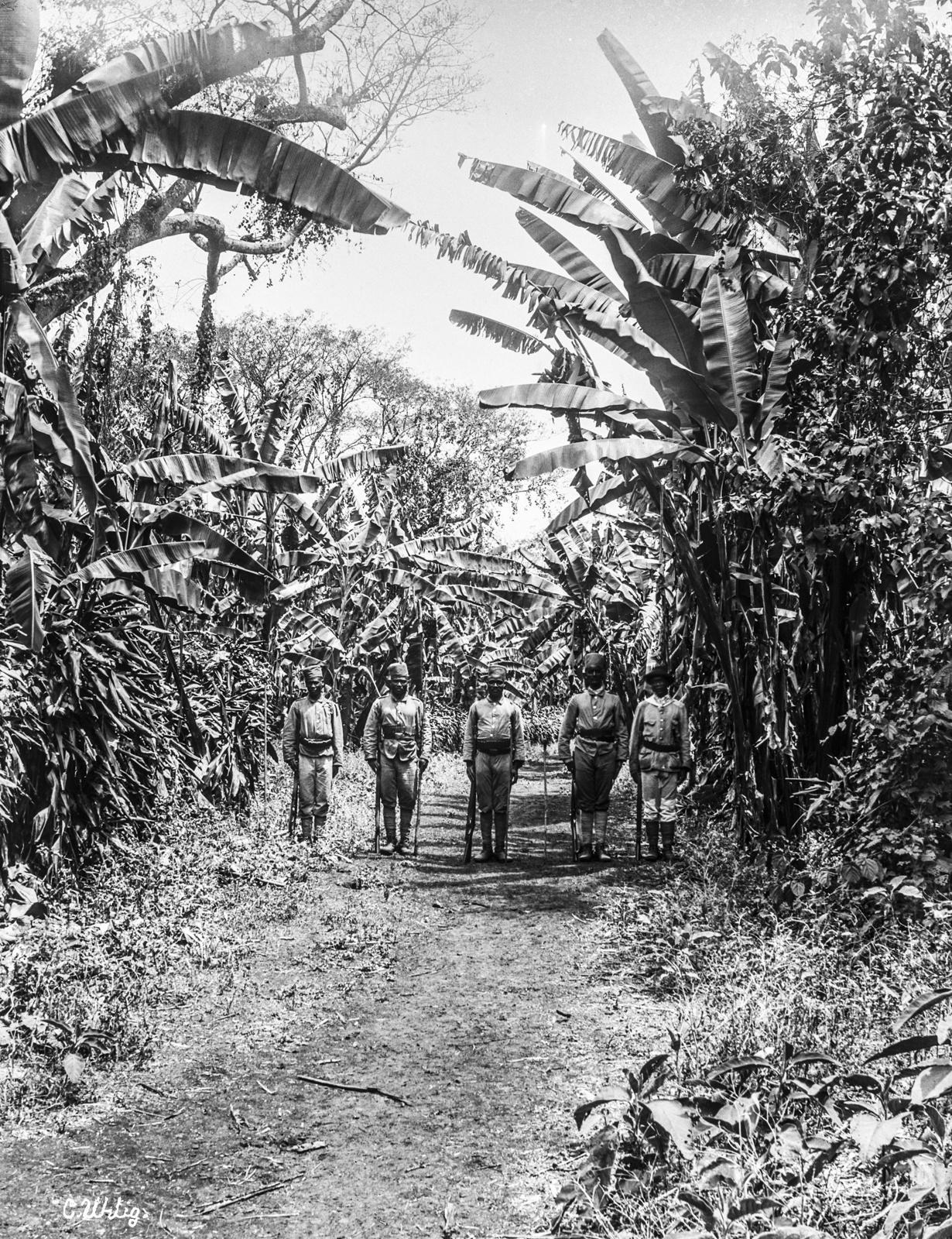 151. Группа аскари на дороге