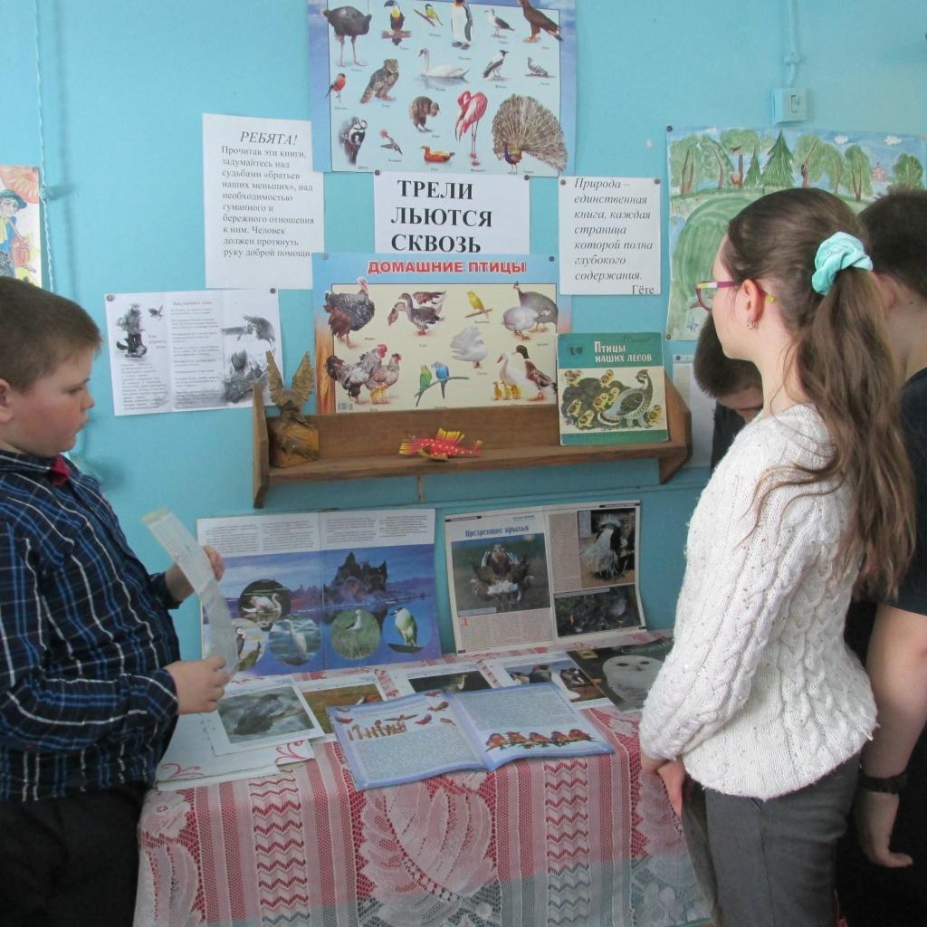 В библиотеках Кораблинского района проведены мероприятия экологической направленности