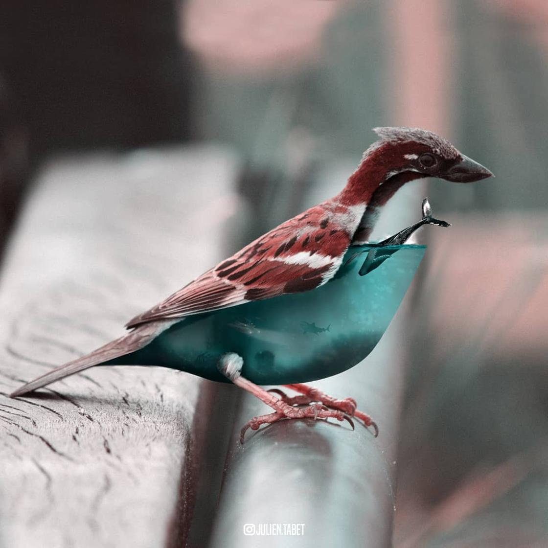 Fantastic Animals – The surreal creations of Julien Tabet