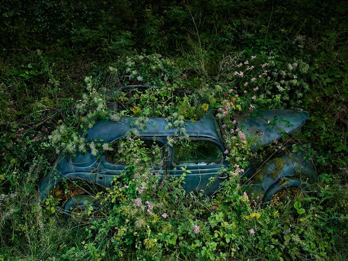 Последнее пристанище авто в фотопроекте «Райская парковка»