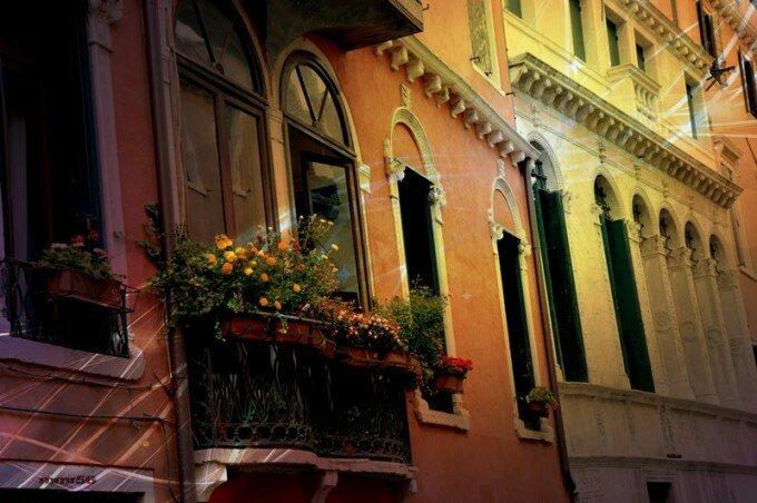 Фотографии со всего мира: Венеция, жуки и восходы