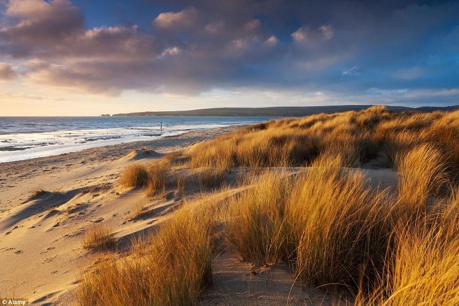 6. Великолепными видами можно полюбоваться, прогуливаясь вдоль пляжа Стадленд-Бич в графстве Дорсет.
