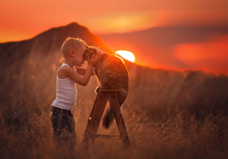10 трогательных фотографий Лизы Холлоуэй
