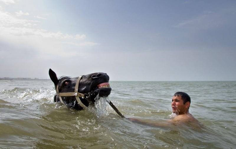 Мужчина купается со своей лошадью, Азербайджан.
