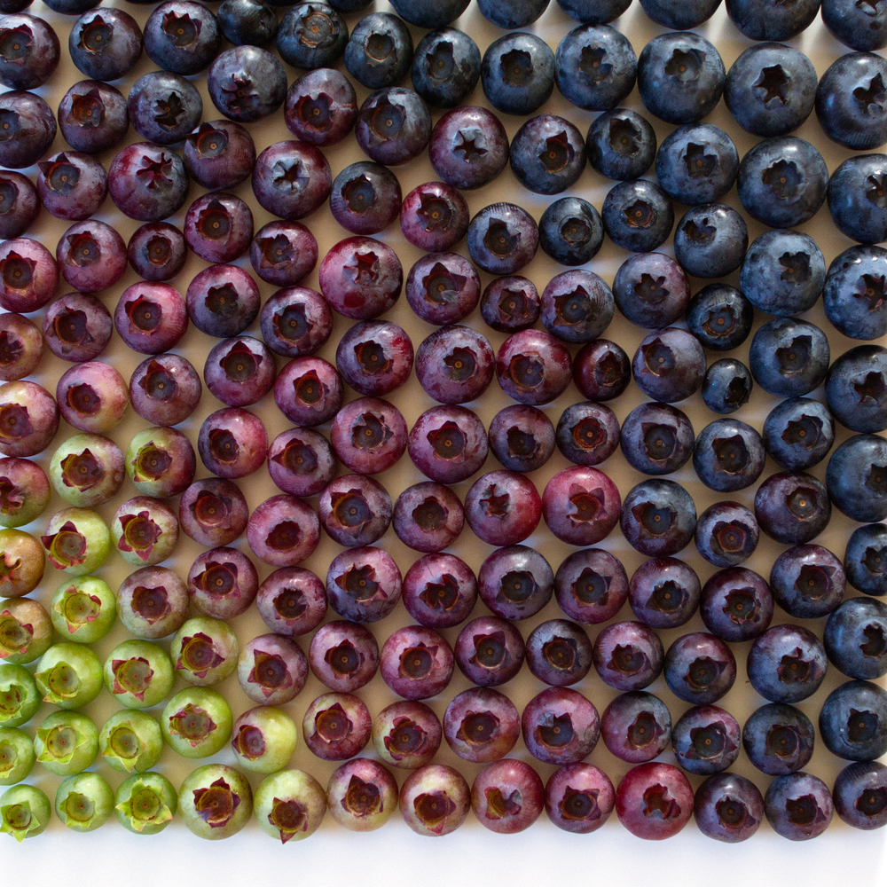 Photographer Brittany Wright Captures Foods in Colorful Gradients