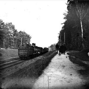 1910. Окрестности Москвы. У платформы Шереметевская