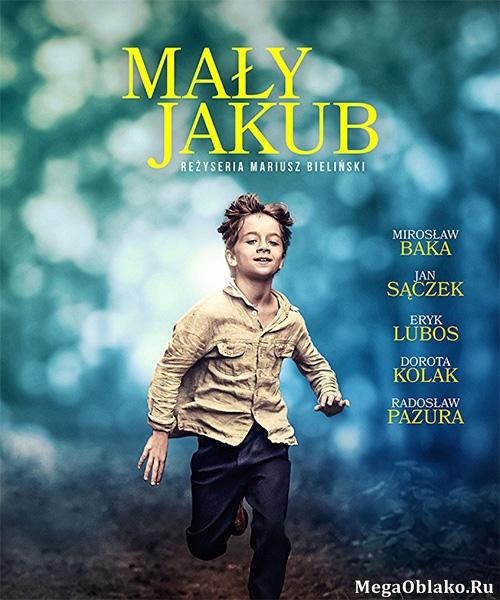 Маленький Якуб / Maly Jakub (2017/DVDRip)