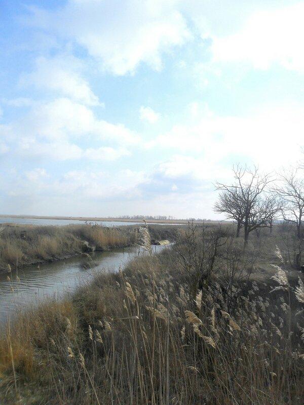 В феврале, на Природе ... SAM_5434.JPG