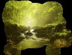 1293040156_paysages_nikita.png