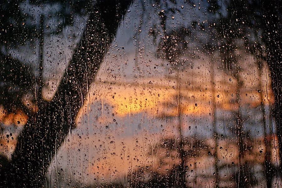 Долгожданный дождь
