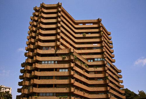 Россия планирует строить многоэтажные дома из дерева