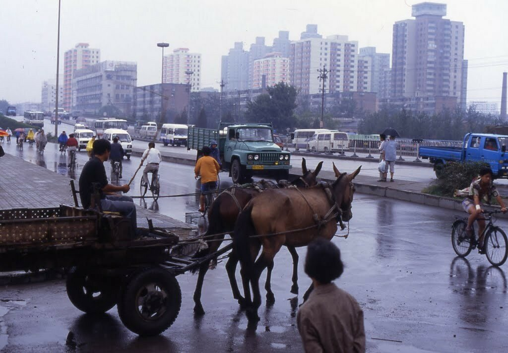1996 Beijing2.jpg