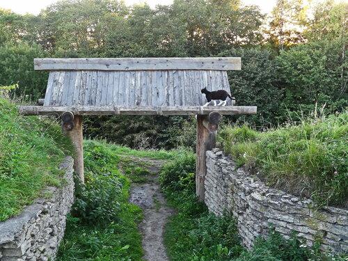 Ворота — старый въезд в Труворово городище.