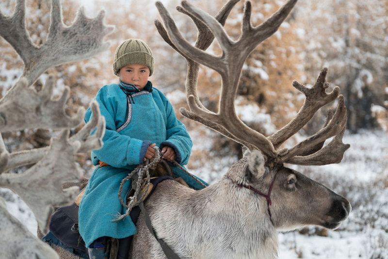 Один день из жизни монгольской семьи оленеводов (11 фото)