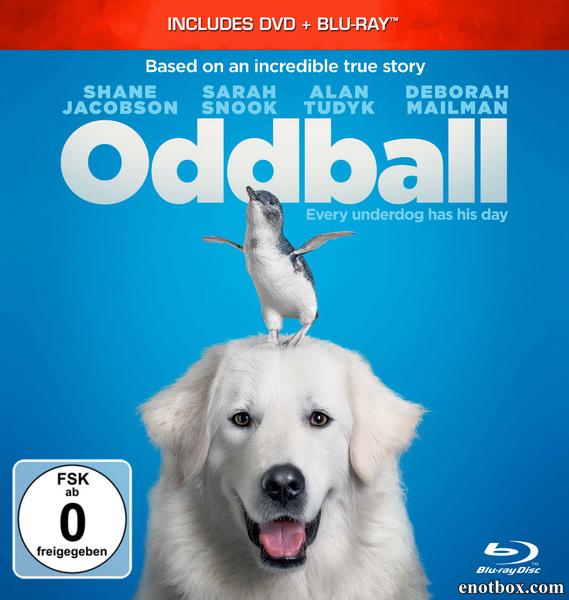 Чудак / Oddball (2015/BDRip/HDRip)