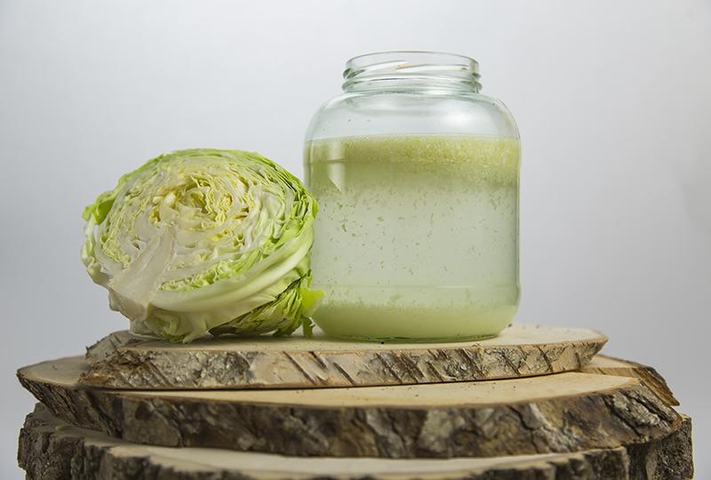 Cabbage-brew-jar-anastasiya-zhitenskaya
