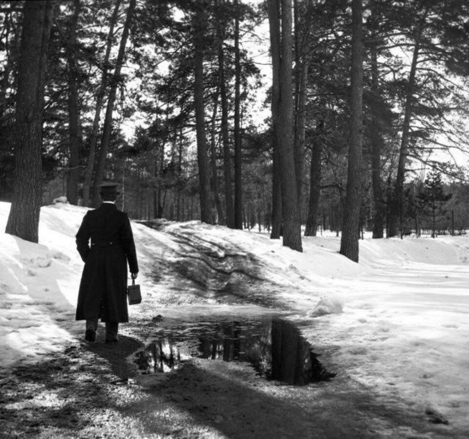 1904. Прогулка в Сокольники