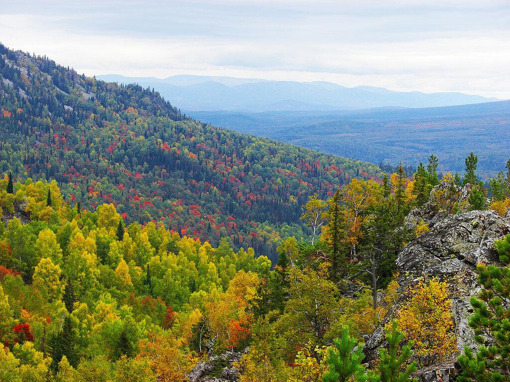 Уральские горы с лесистыми склонами
