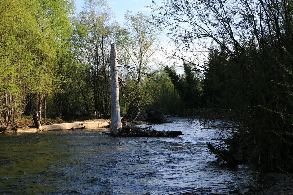 река песчаная алтайский край рыбалка