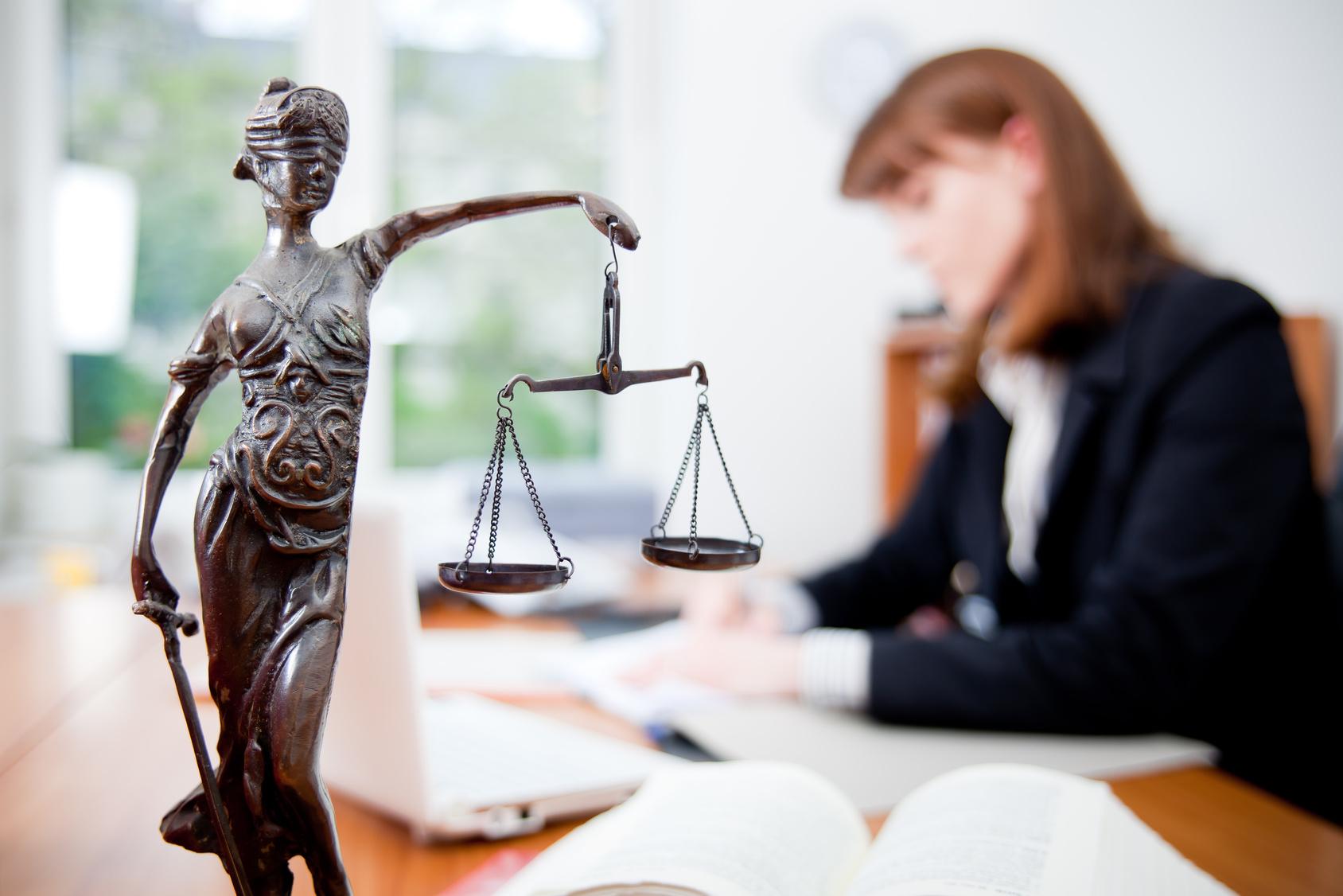 Юридическая помощь на все случаи жизни (1 фото)