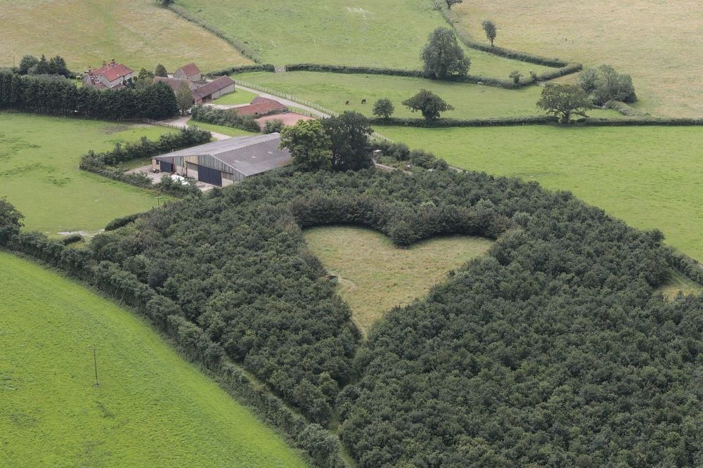 Пролетая на воздушном шаре над графством Глостершир, можно увидеть сердце размером в акр. Причина ег