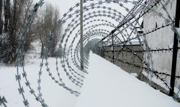 Евгению Чудновец, осужденную зарепост всоцсети, отправили вкарцер из-за одеяла