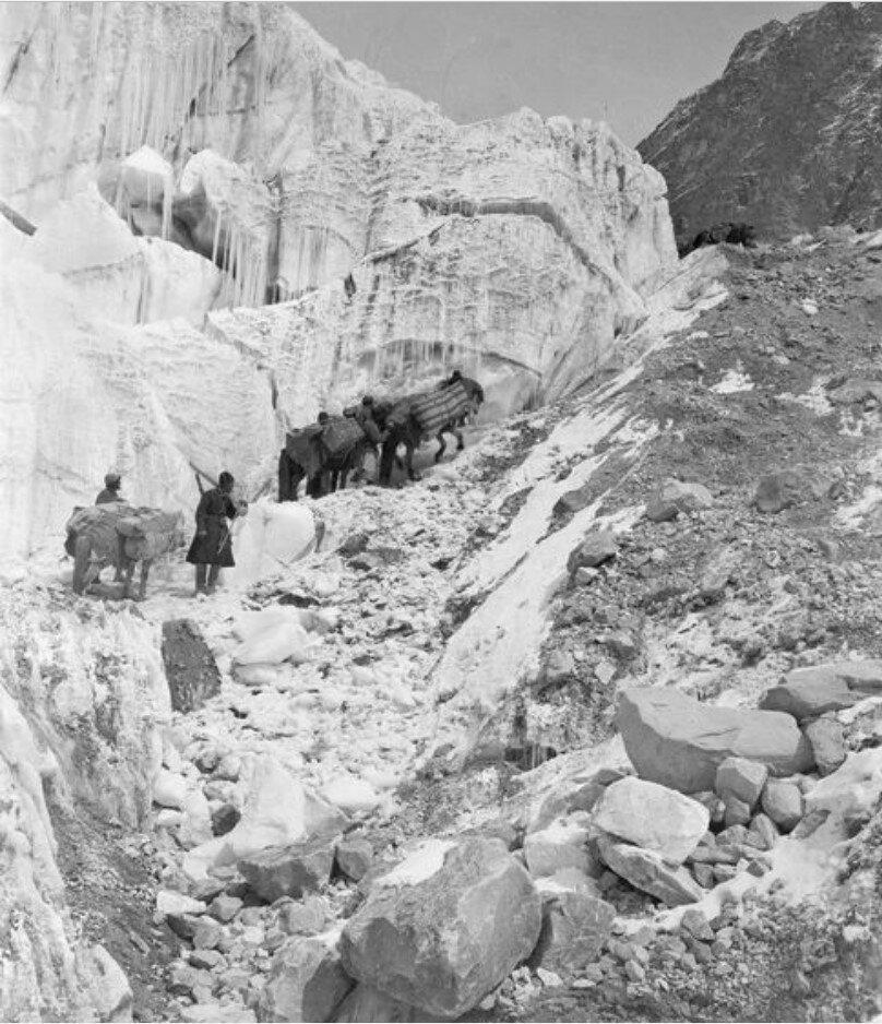 Караван экспедиции Маннергейма поднимается вверх по Музартскому леднику
