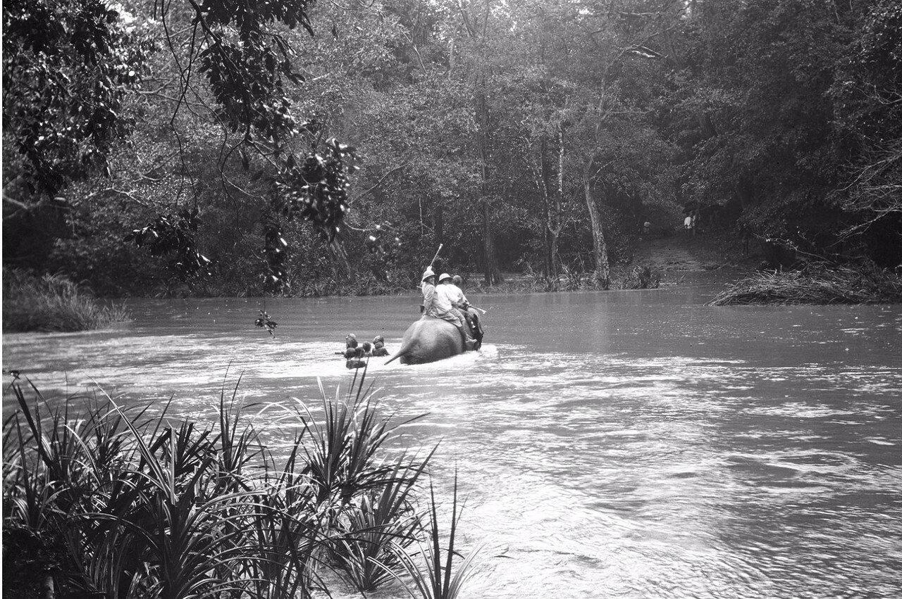 100. Пересечение реки Гал-Оя на слонах