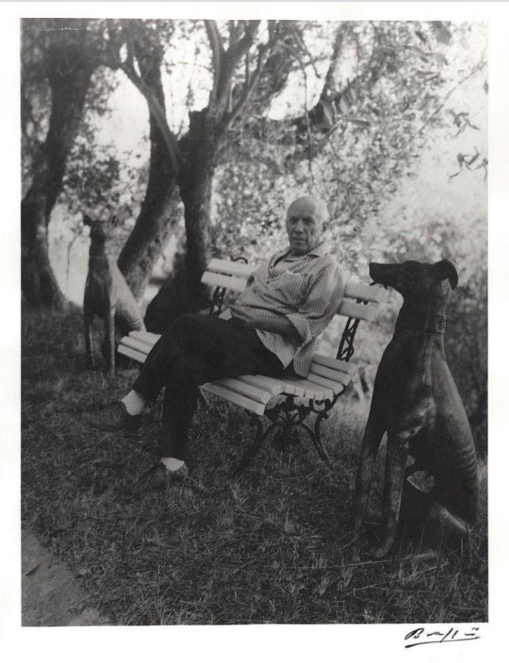1949. Портрет Пикассо