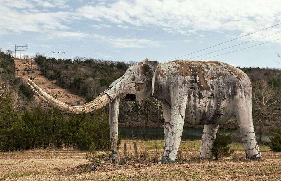 «Мир динозавров»: заброшенный тематический парк развлечений в Арканзасе динозавров», 37летний, после, пожара, который, разрушил, главное, здание, фотограф, акров, пробрался, территорию, парка, сделал, несколько, интересных, закрылся, площади, Бивере, развлечений