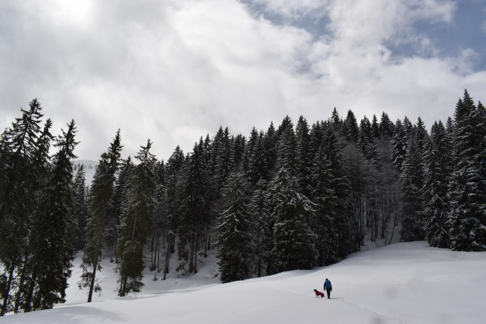 Сборник рассказов о хайкинге по горам Германии с описанием маршрутов