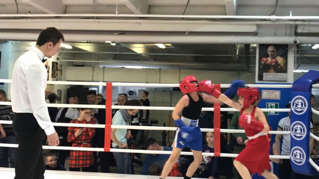 Юные кораблинские боксеры ГАУ ДО «ДЮСШ «Рекорд» стали победителями межрегионального турнира «Ударная сила»