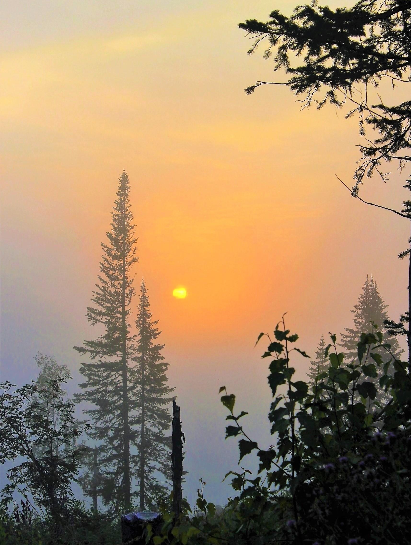 IMG_7232.JPG Восход в тумане