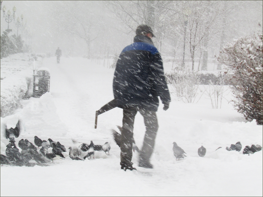 зима 2015 силуэт