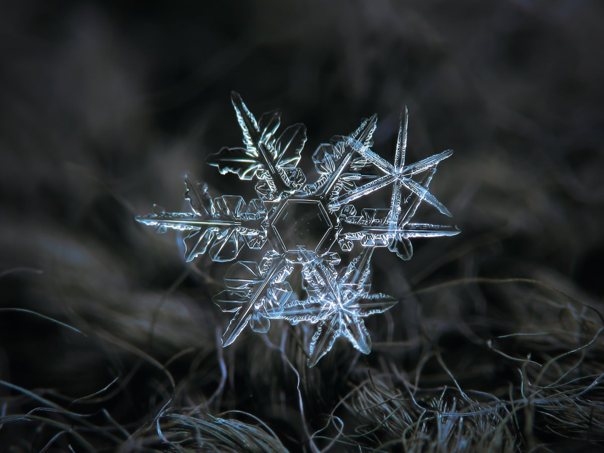 kljatov-was-inspired-to-try-his-own-snowflake-photography-after-seeing-a-website-called-snow-crystals-created-by-a-caltech-physics-professor-named-kenneth-libbrecht.jpg