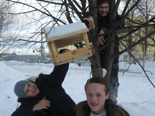 Поможем синицам в мороз прокормиться!