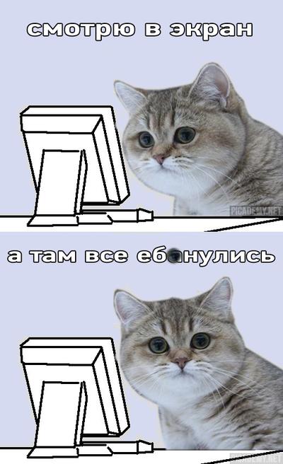 Там все е#анулись!