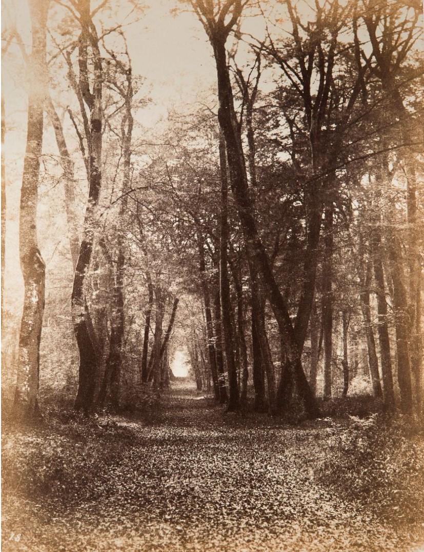1864. Дорога в Брике