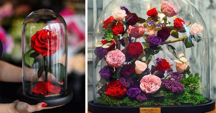 Розы будут жить в течение 3-х лет. Красота!!!!!!!!!! (11 фото)