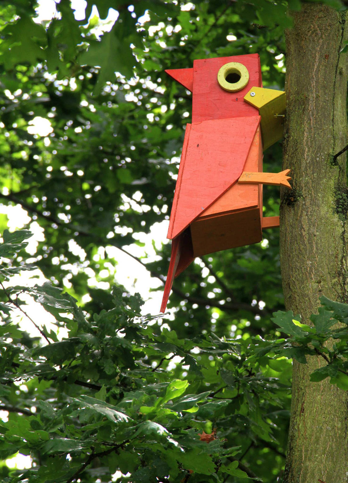 This street artist has built more than 3500 urban bird houses!