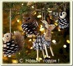 С Новым годом поздравляю !