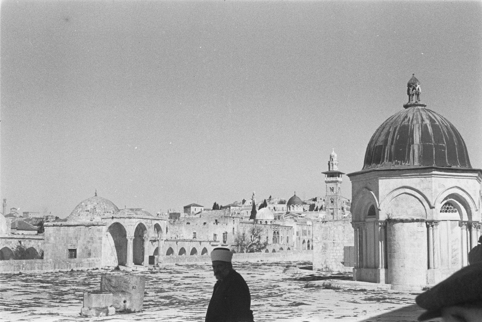 На Храмовой горе