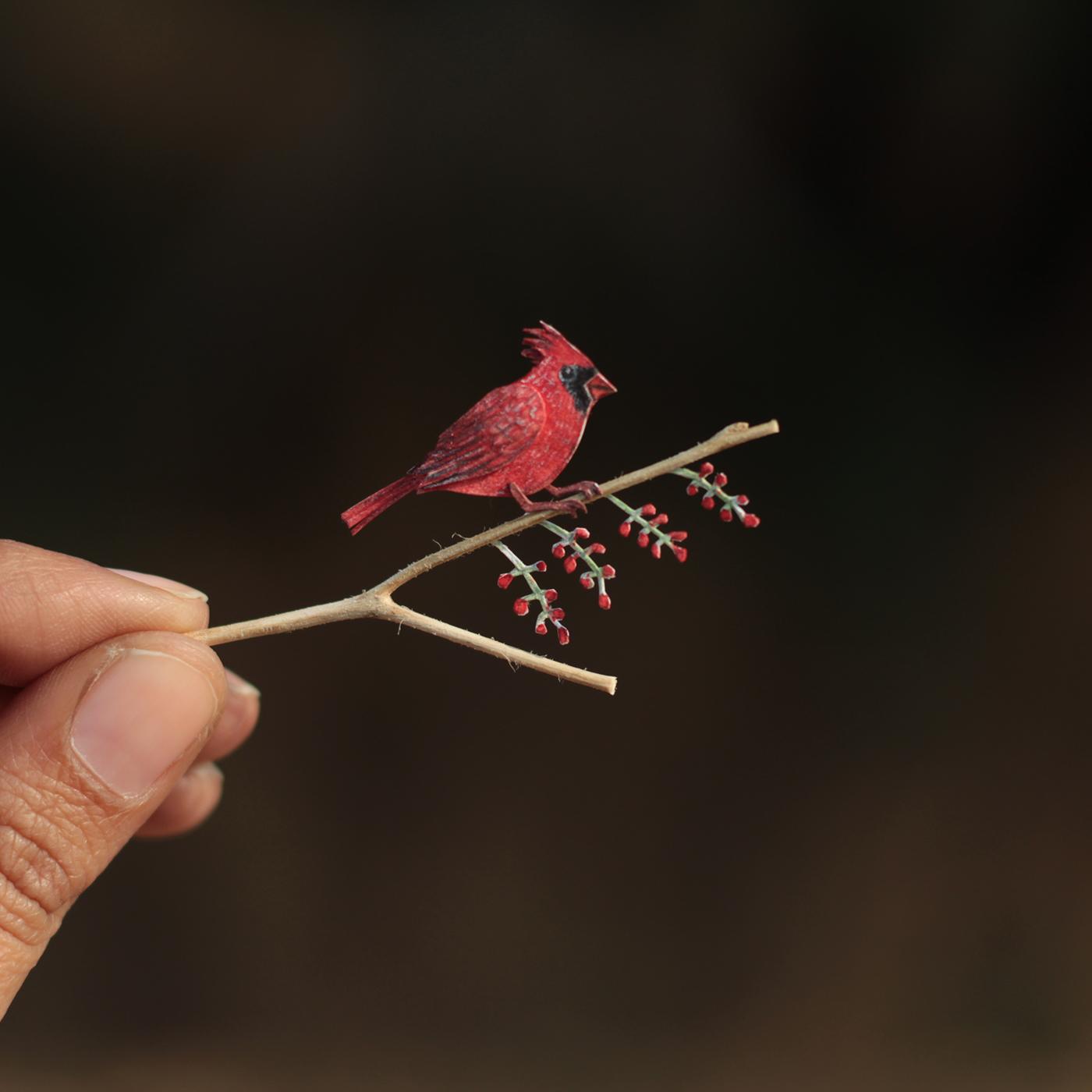 Миниатюрные птицы / работа Nayan & Vaishali's Illustration