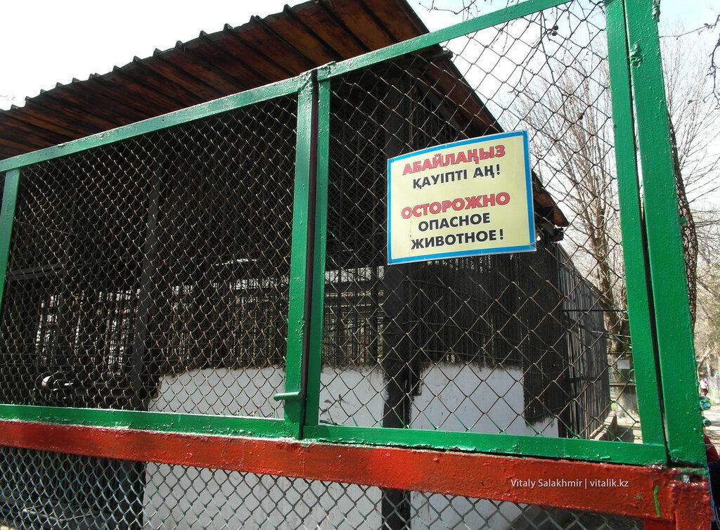 Опасное животное, зоопарк Шымкента