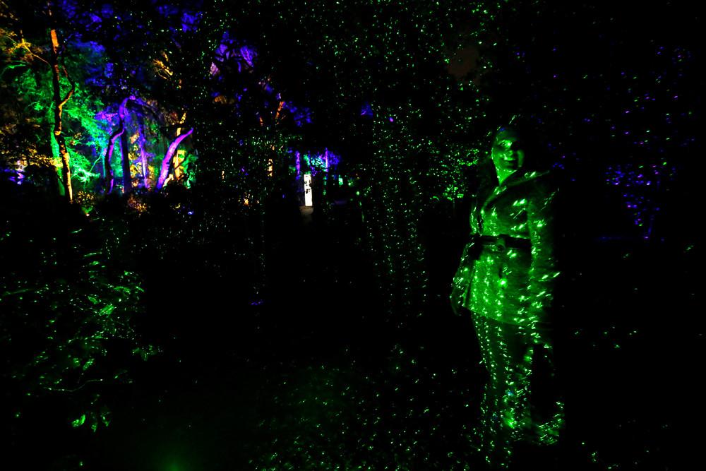 Выставка «Лес света» в США