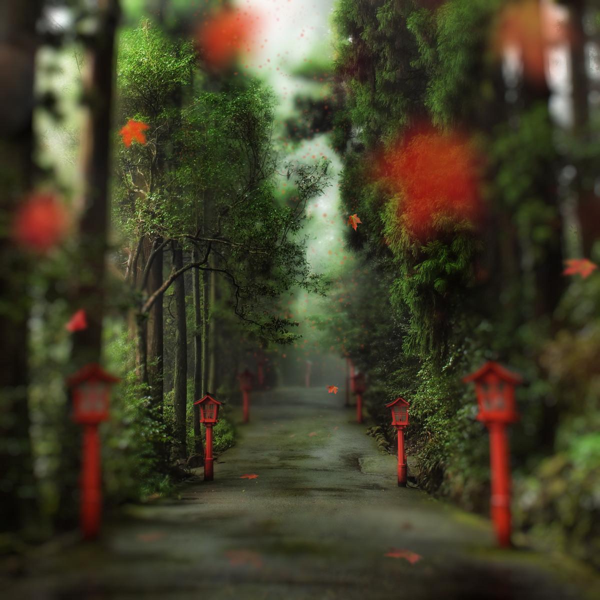 фотографии Trey Ratcliff