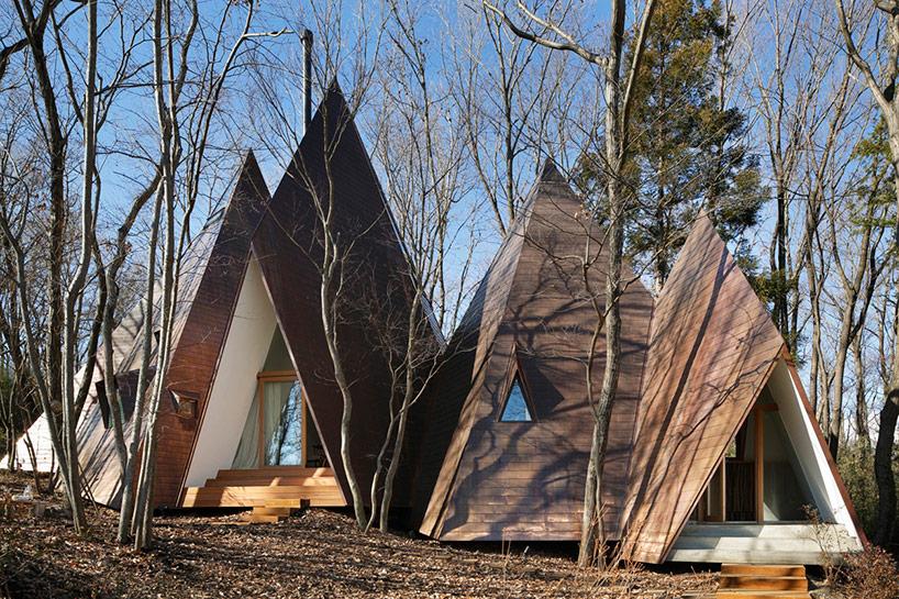 Необычный лесной домик (13 фото)